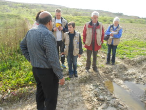 A team of western observers taking note of the damage caused by Israeli settlers