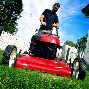 lawnmower2