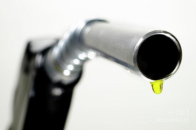 british petroleum research paper